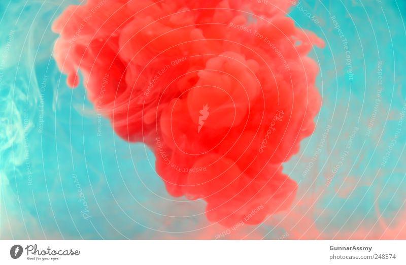 Rote Wolke rot Kunst außergewöhnlich wild Zufriedenheit ästhetisch Idee Flüssigkeit bizarr abstrakt Unterwasseraufnahme Experiment Gefühle