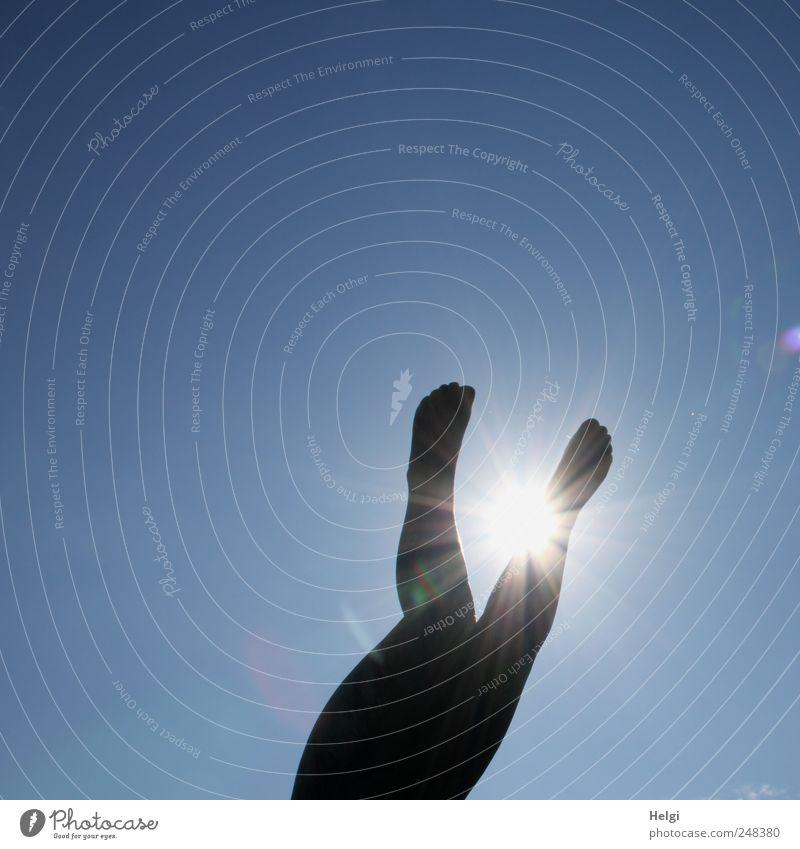 Sommer... Ferien & Urlaub & Reisen Tourismus Städtereise Oslo Frogner Park Mensch Beine Fuß 1 Wolkenloser Himmel Schönes Wetter Statue Stein leuchten ästhetisch