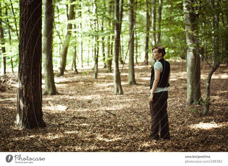 ich fühl mich brandenburg. Mensch Frau Natur Baum Pflanze Einsamkeit ruhig Erwachsene Wald Erholung Umwelt Landschaft träumen gehen warten natürlich