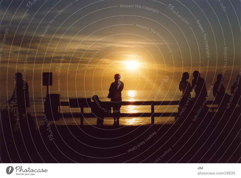Silhouetten im Sonnenuntergang Strand Meer Mensch Leben Abend Licht Menschengruppe mehrere genießen Erholung Zaun Gegenlicht Himmel sprechen Zusammensein