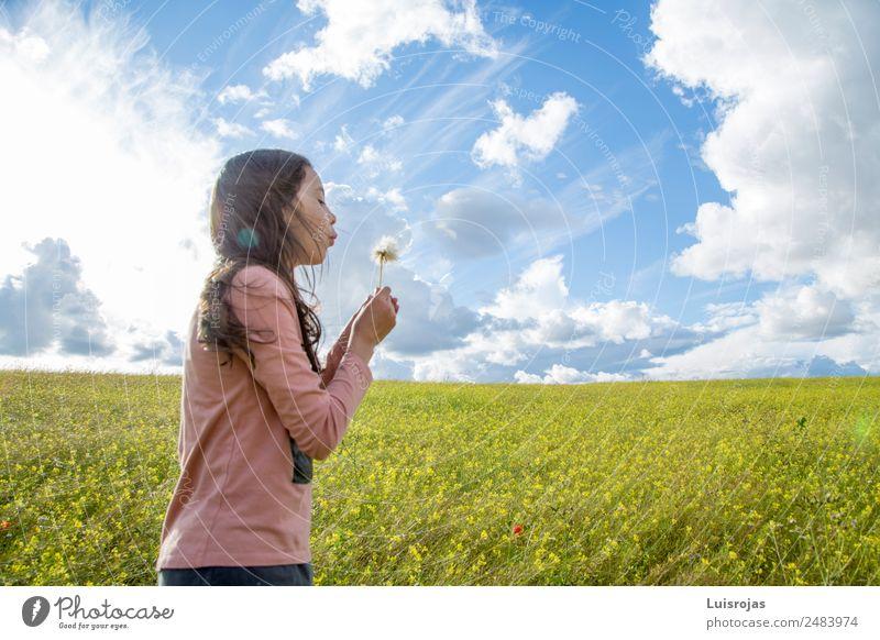 Mädchen, das auf einem Feld mit gelben Blumen spazieren geht, sonniger Tag Freude Gesundheit Duft Ferien & Urlaub & Reisen Sommer feminin 1 Mensch 3-8 Jahre