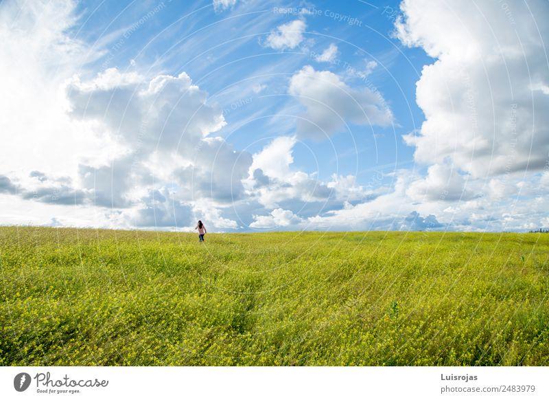Mädchen, das auf einem Feld mit gelben Blumen spazieren geht, sonniger Tag Freude Gesundheit Leben Mensch feminin 1 3-8 Jahre Kind Kindheit 8-13 Jahre Umwelt