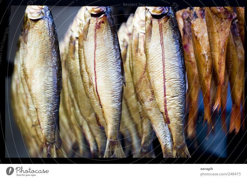 Fische Räucherfisch Ernährung Lebensmittel geräuchert abgehängt Rahmen Erholung Fischereiwirtschaft Menschenmenge aufgehängt Markt Marktstand Preserve
