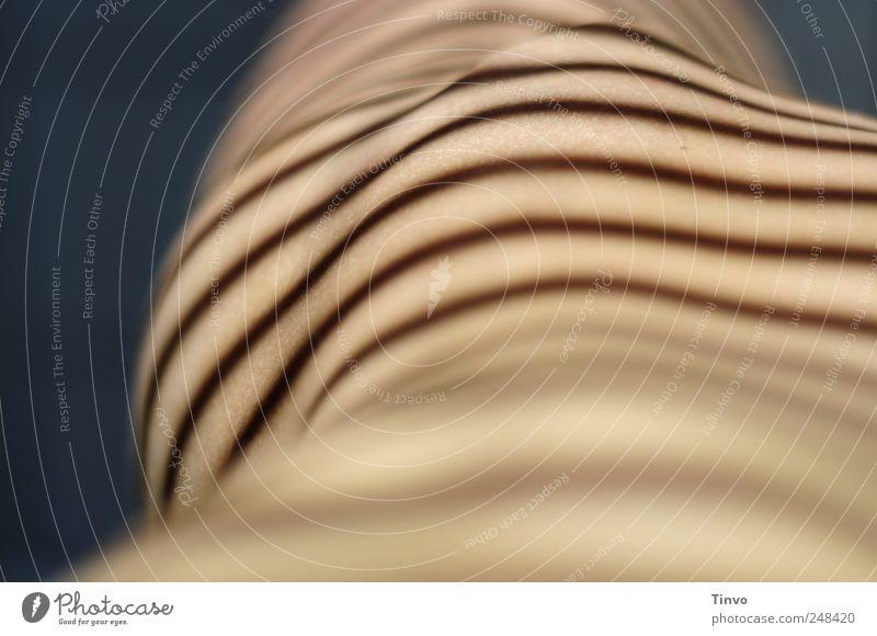 hip feminin Junge Frau Jugendliche Erwachsene Körper Haut 1 Mensch nackt Streifen gestreift Muster Linie Körpermalerei Lichtspiel Schatten Schattenspiel Hüfte