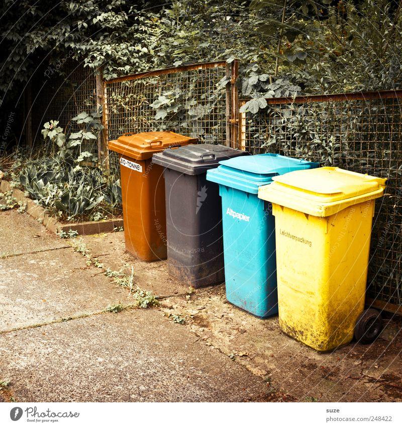1 Mexikaner, 1 Afrikaner, 1 Inuit und 1 Chinese ... Umwelt Sträucher Papier Beton blau braun gelb schwarz Trennung Müll Müllbehälter Zaun Recycling Boden