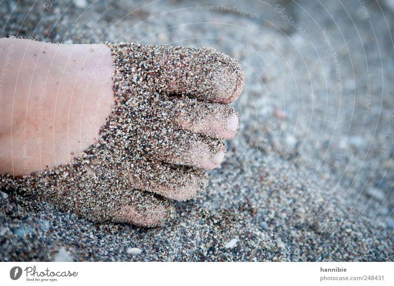 Sand.ale Fuß Strand Bucht Meer blau grau rosa Lebensfreude Freiheit Freizeit & Hobby Freude Ferien & Urlaub & Reisen Zehen Sommer Erholung Five Fingers Farbfoto
