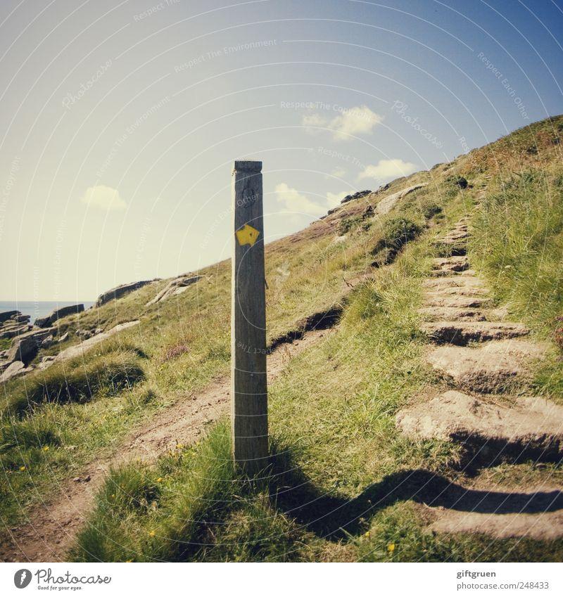 upwards Himmel Natur Pflanze Sommer Wolken gelb Wiese Umwelt Landschaft Gras Wege & Pfade Küste Erde Felsen Schilder & Markierungen wandern
