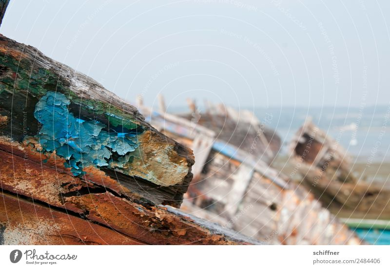 Trash | aus der Bretagne alt Farbe Landschaft Strand Küste Wasserfahrzeug Bucht Schifffahrt abblättern Friedhof Lack Bootsfahrt Schiffswrack Patina Schiffsrumpf