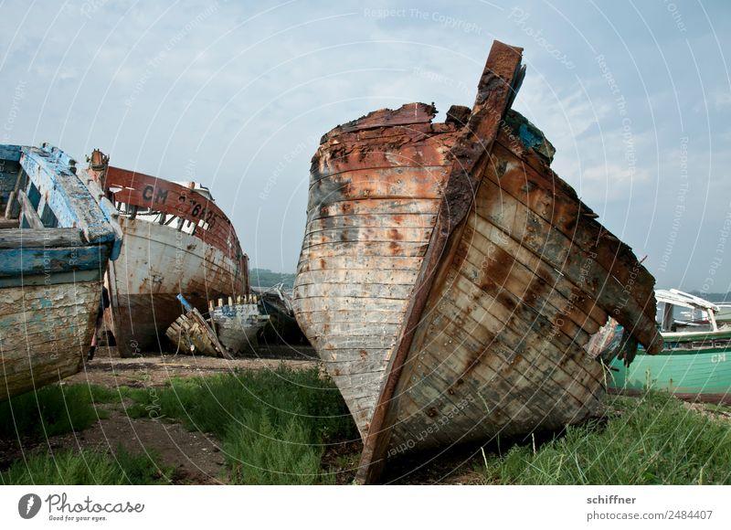 Zur Neige gehen schlechtes Wetter Bucht Schifffahrt Beiboot Ruderboot alt Verfall verfallen Schiffsbug Schiffswrack Wasserfahrzeug Fischerboot Friedhof