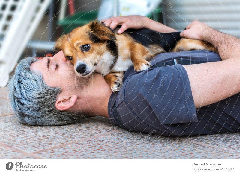 Schöne Umarmung eines Mannes und seines geliebten Hundes. Lifestyle Erwachsene Kopf Arme 1 Mensch 30-45 Jahre grauhaarig Haustier Tier berühren liegen