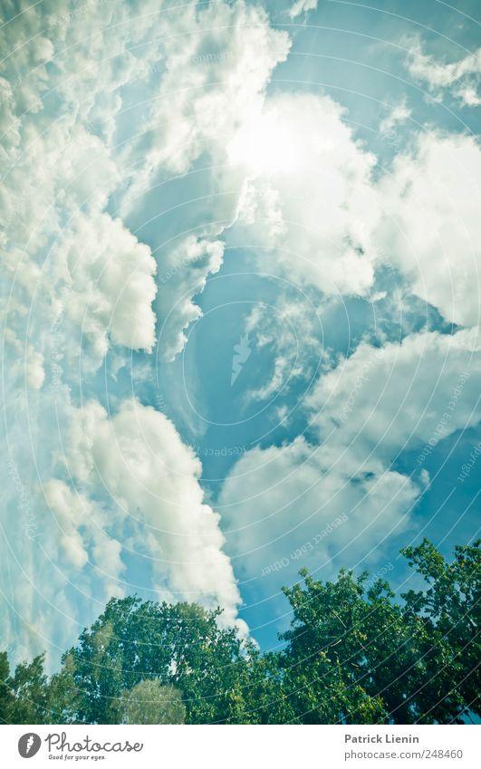 Verkehrte Welt Himmel grün blau Wolken oben unten verkehrt verdreht