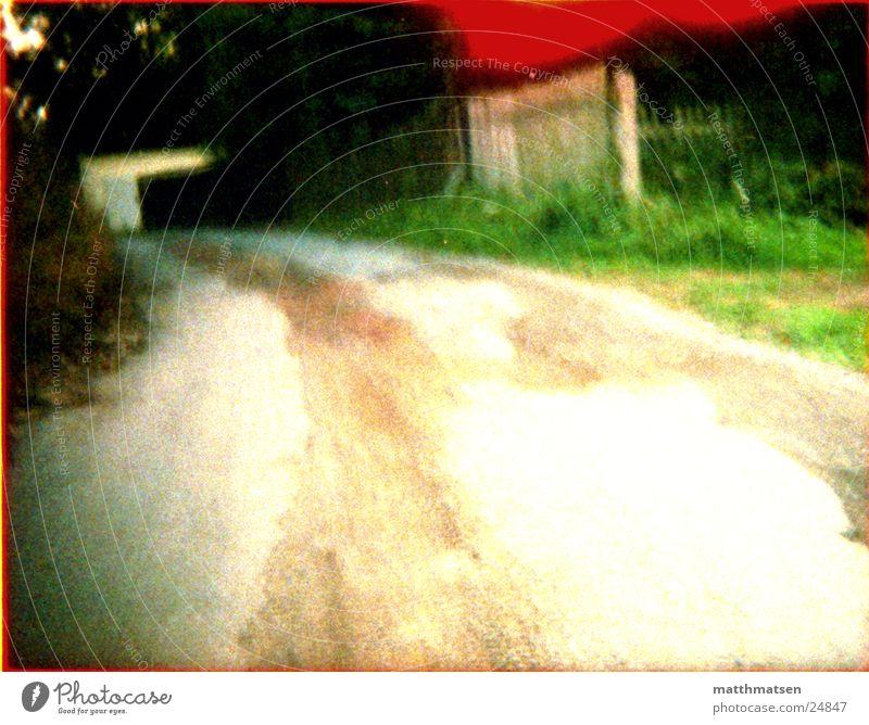 der Weg Geschwindigkeit Unschärfe grün Baum Straße Kurve Ferne modern Landschaft