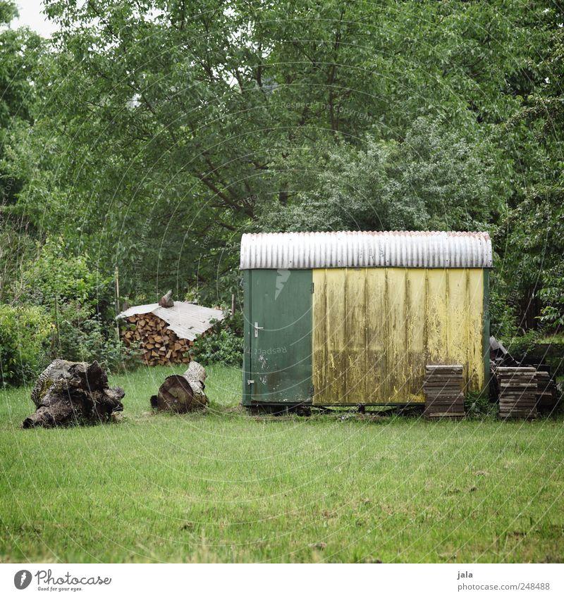 garten Natur weiß grün Baum Pflanze gelb Wiese Umwelt Gras Garten Holz natürlich Sträucher Grünpflanze Nutzpflanze Bauwagen