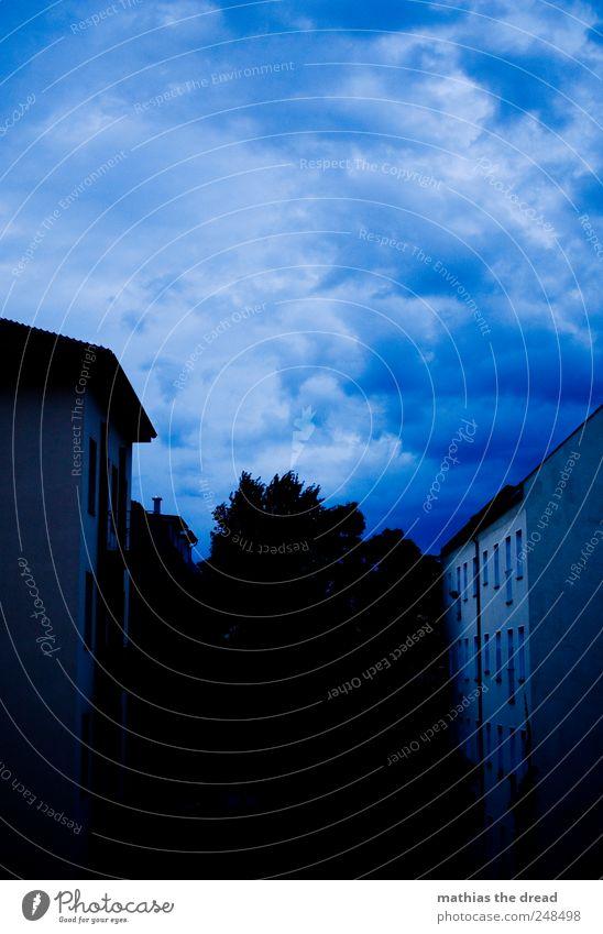 WOLKIG Umwelt Natur Landschaft Luft Himmel Wolken Gewitterwolken Horizont schlechtes Wetter Wind Sturm Regen Pflanze Baum Stadtzentrum Skyline Menschenleer Haus