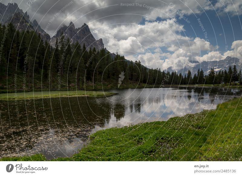 Lago d'Antorno Natur Ferien & Urlaub & Reisen Pflanze grün Landschaft Erholung Wolken ruhig Wald Berge u. Gebirge Wiese Tourismus Freiheit See Ausflug