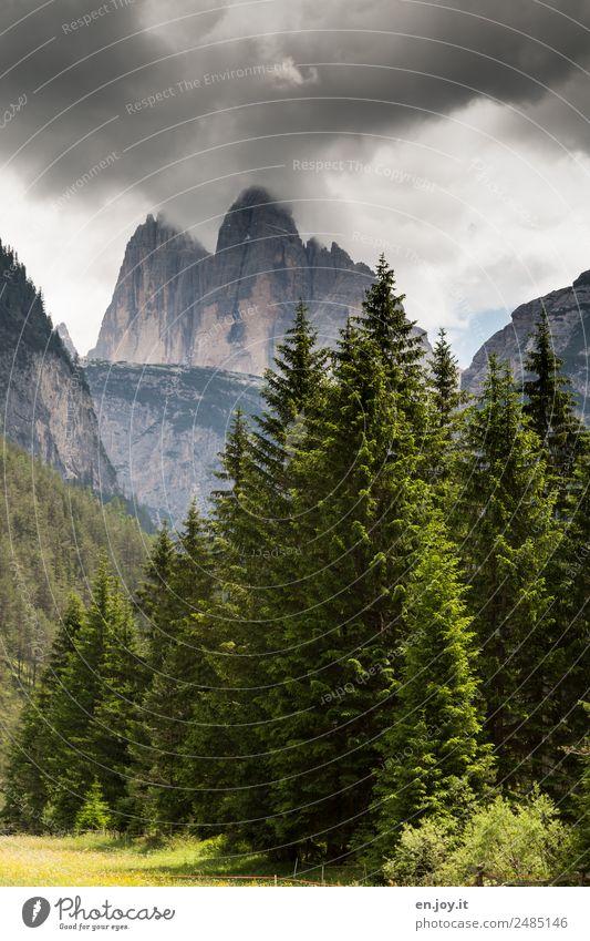 Nordseite Ferien & Urlaub & Reisen Ausflug Sommerurlaub Berge u. Gebirge wandern Natur Landschaft Gewitterwolken Klima Tanne Wald Felsen Alpen Drei Zinnen