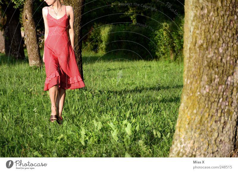 Unterwegs Mensch Natur Jugendliche schön Baum rot Sommer Einsamkeit Wiese feminin Gras Park gehen Spaziergang Kleid Schönes Wetter