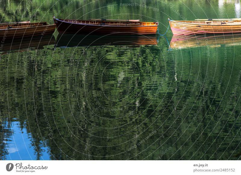 Zusammenhalt Ferien & Urlaub & Reisen Umwelt Natur Landschaft Wasser Sommer Wald See Ruderboot grün Erholung Freizeit & Hobby Idylle Religion & Glaube Rettung