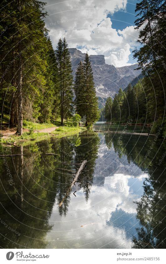 Zulauf Himmel Natur Ferien & Urlaub & Reisen Sommer Landschaft Baum Erholung Wolken ruhig Wald Berge u. Gebirge Wege & Pfade See Idylle Italien Hoffnung