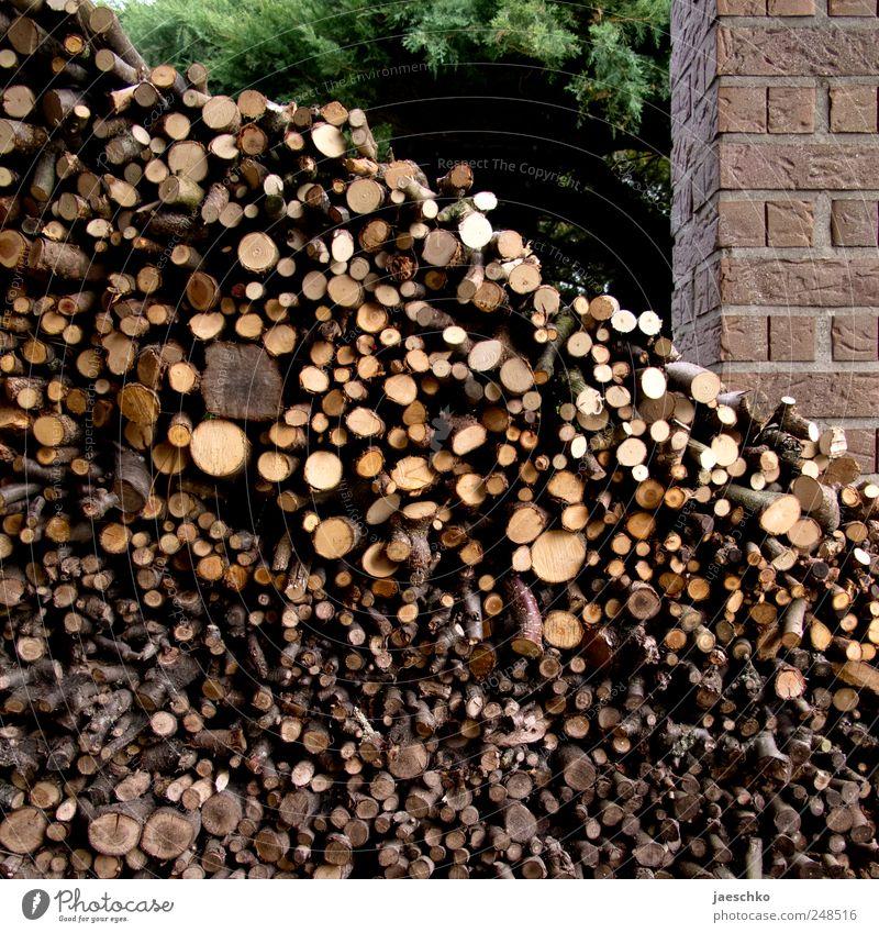 Ordentlich Holz alt Stein Garten frisch viele Ast Hütte nachhaltig Lager Stapel Gartenarbeit heizen ansammeln Brennholz Vorrat