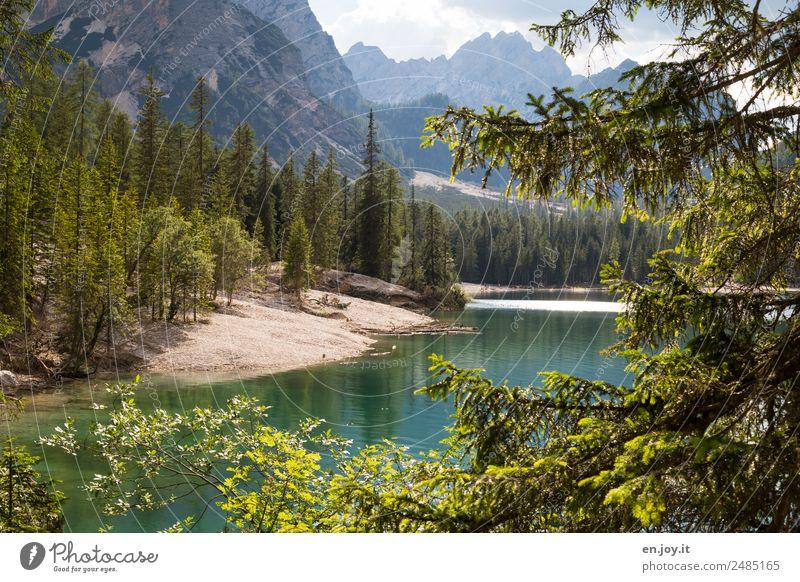Umrunden Natur Ferien & Urlaub & Reisen Sommer grün Landschaft Baum Erholung Einsamkeit Wald Berge u. Gebirge See Felsen Ausflug Idylle Abenteuer Italien