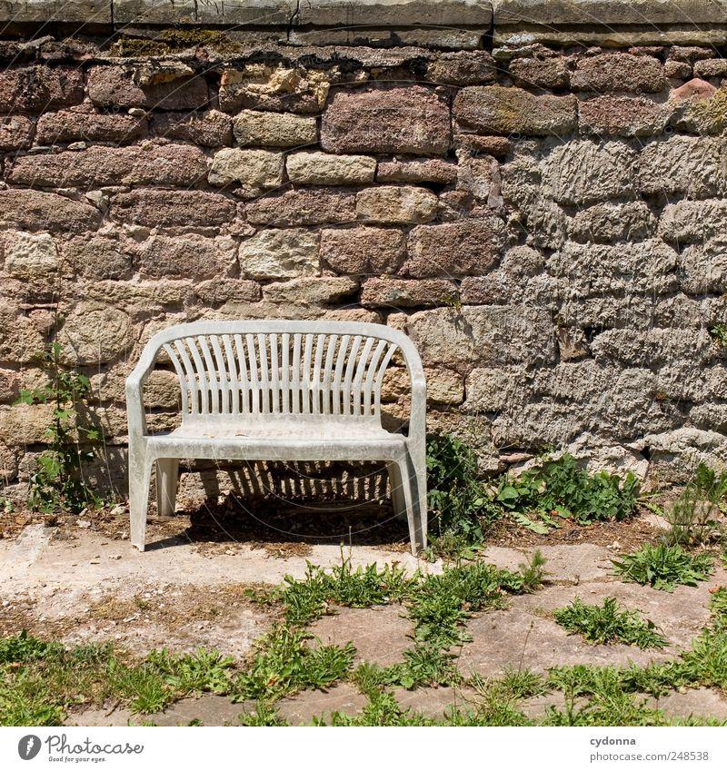 Für die Liebe Natur ruhig Einsamkeit Erholung Wand Freiheit Umwelt Mauer träumen Zeit Ausflug ästhetisch paarweise Lifestyle Pause Bank