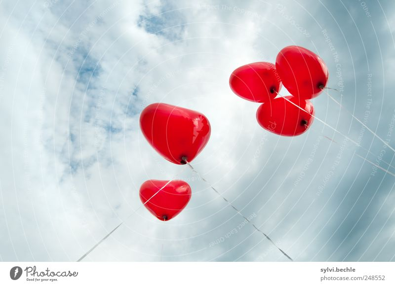 Love, Love, Love Himmel rot Wolken Liebe Feste & Feiern Wetter fliegen Herz Luftballon Schnur Romantik Unwetter aufwärts Verliebtheit aufsteigen Knoten