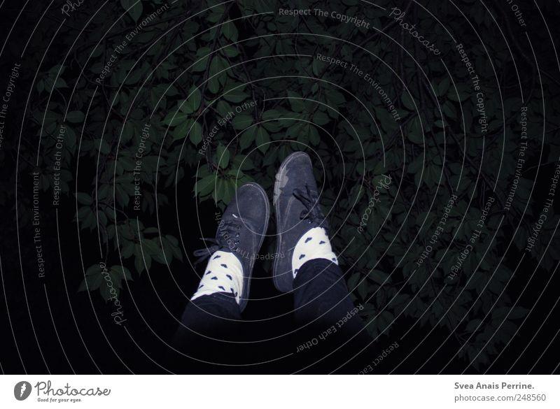 nachts steh ich heimlich auf dem klodeckel . Mensch Baum Schuhe trashig Strümpfe trendy Strumpfhose Leggings Blätterdach
