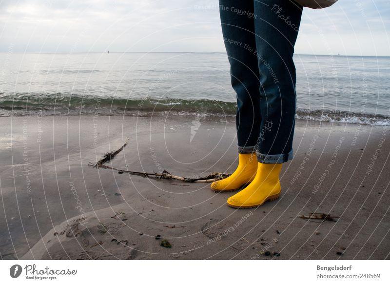 Wattwanderung Mensch Wasser Strand Ferien & Urlaub & Reisen Meer ruhig Ferne gelb Erholung Freiheit Sand Küste Wellen Horizont Ausflug Freizeit & Hobby