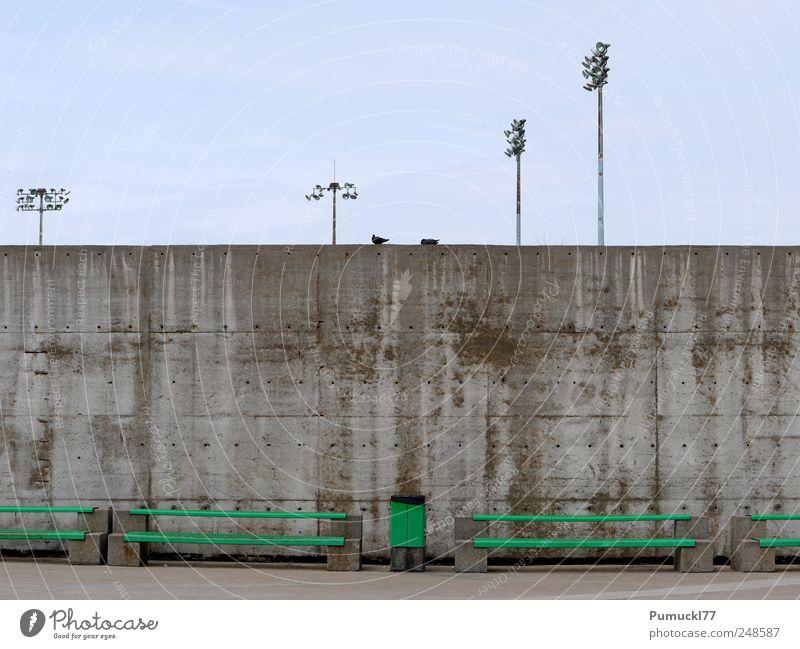 Zweisam einsam Himmel blau grün Einsamkeit Tier Wand grau Mauer Metall Beton Bank Langeweile Taube Müllbehälter Laternenpfahl