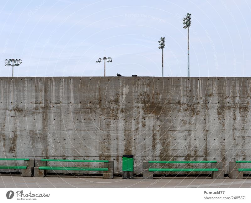 Zweisam einsam Himmel Montréal Menschenleer Mauer Wand Bank Müllbehälter Laternenpfahl Taube 2 Tier Beton Metall blau grau grün Einsamkeit Langeweile