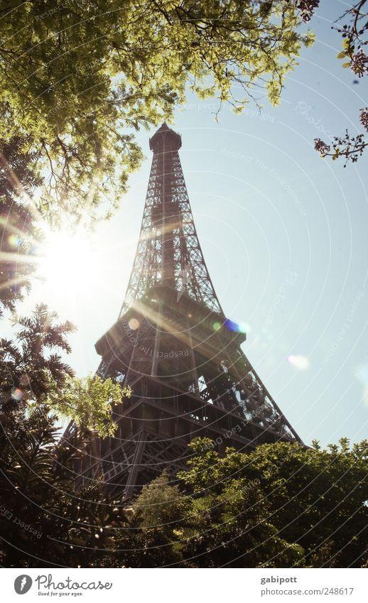 Ausverkauf Natur Himmel Wolkenloser Himmel Sommer Schönes Wetter Baum Park Paris Frankreich Bauwerk Architektur Sehenswürdigkeit Wahrzeichen Tour d'Eiffel