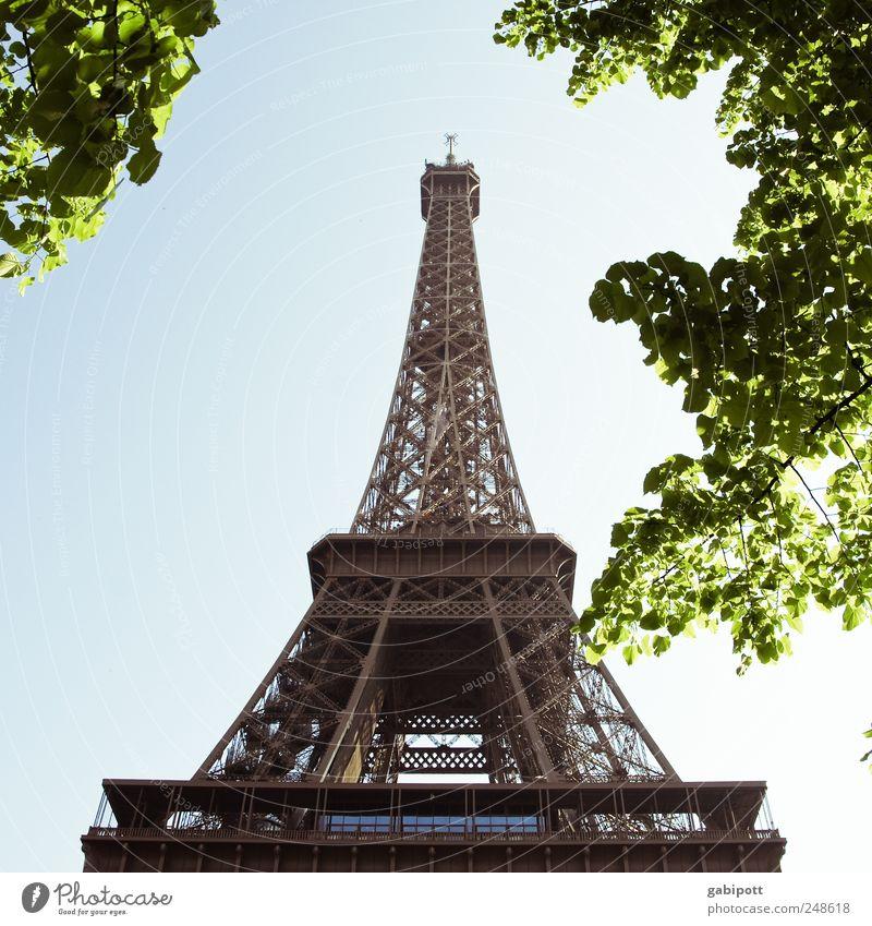 Aufstrebend Natur Himmel Wolkenloser Himmel Sommer Schönes Wetter Baum Park Paris Frankreich Stadtzentrum Turm Bauwerk Gebäude Sehenswürdigkeit Wahrzeichen