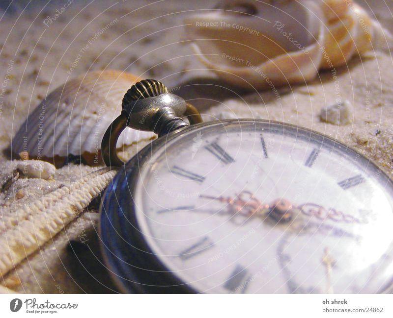 Zeit am Meer Strand Sand Freizeit & Hobby Uhr Muschel Taschenuhr