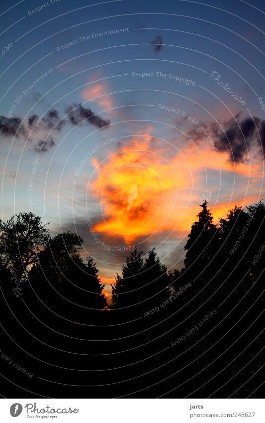skyshine Himmel Natur Wolken Umwelt Wärme Wetter frei fantastisch Schönes Wetter schlechtes Wetter
