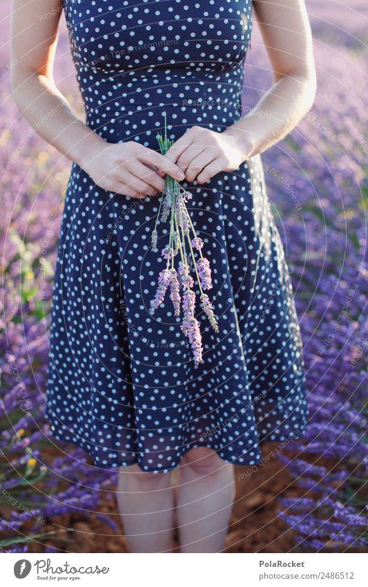 #A# Lavendel Morgen Frau Mensch schön Blume ruhig Mädchen feminin Kunst ästhetisch Idylle Blühend Spaziergang festhalten violett Blumenstrauß Frankreich