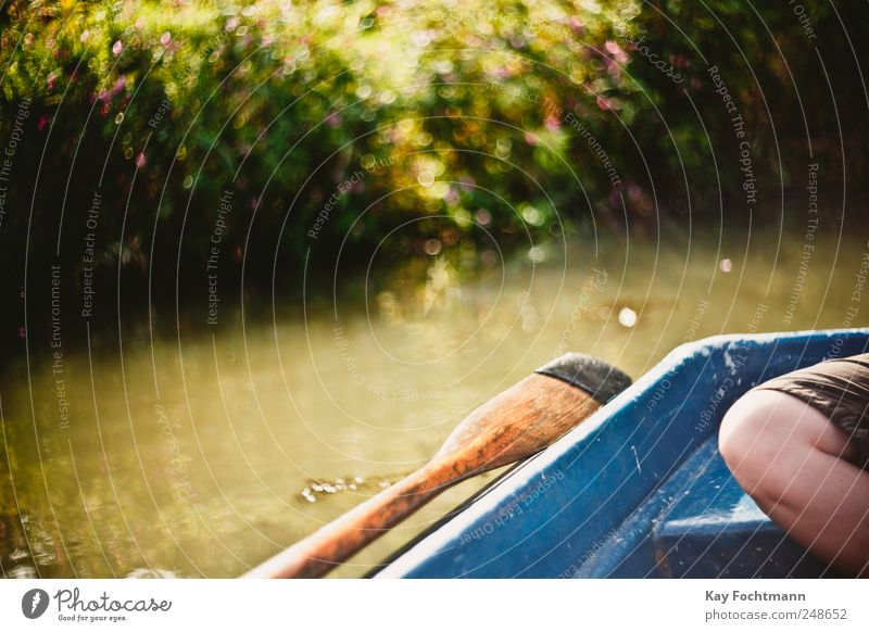 sommersonntagsbokeh Lifestyle Glück Freizeit & Hobby Paddeln Bootsfahrt Ferien & Urlaub & Reisen Ausflug Freiheit Sommer Sommerurlaub Beine 1 Mensch Natur