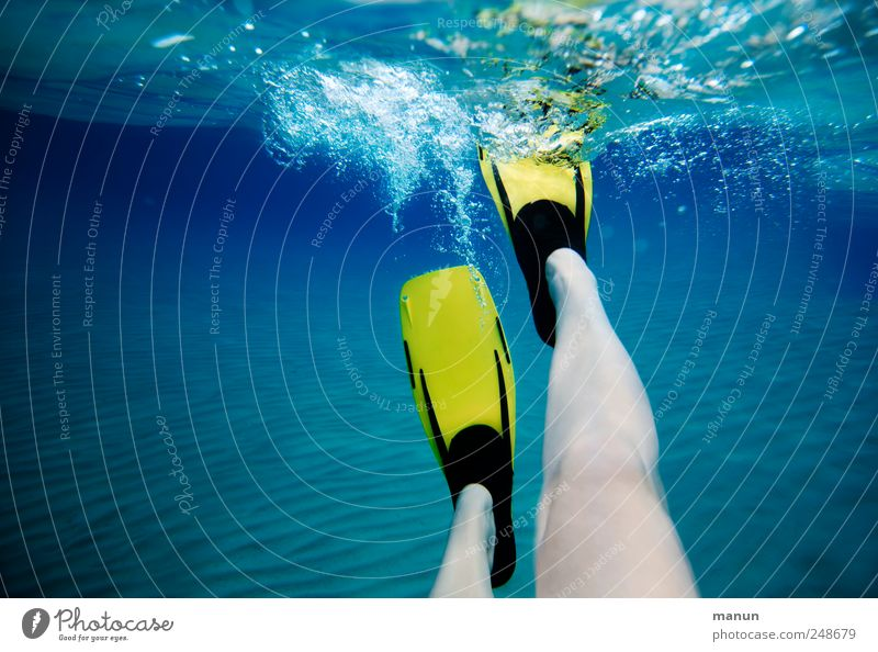 aqua-power Freizeit & Hobby Ferien & Urlaub & Reisen Sommerurlaub Fitness Sport-Training Wassersport Schwimmen & Baden tauchen Mensch Beine 1 Meer Schwimmhilfe