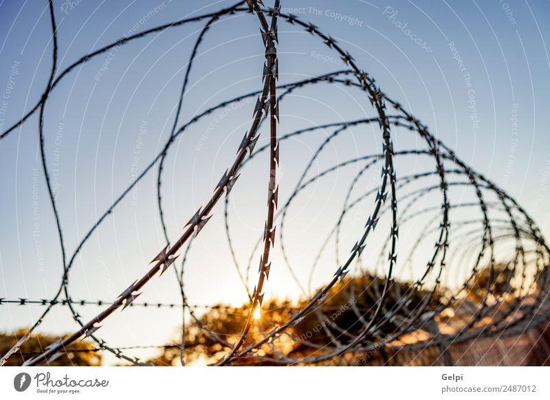 Zaun mit Stachelbett Freiheit Camping Himmel Metall Stahl Rost Linie blau schwarz weiß Sicherheit Schutz Geborgenheit gefährlich Krieg Draht