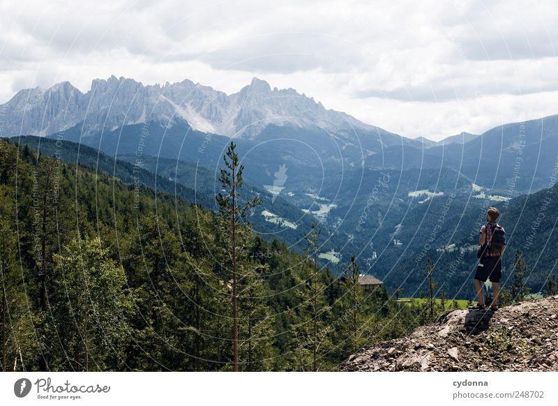 Mein Heimatfilm Natur Baum Ferien & Urlaub & Reisen Sommer Wald Ferne Erholung Umwelt Landschaft Leben Berge u. Gebirge Freiheit Bewegung Wege & Pfade träumen