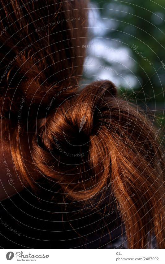 haar schön Körperpflege Haare & Frisuren Gesundheit Mensch feminin Junge Frau Jugendliche Erwachsene Leben 1 brünett langhaarig ästhetisch Farbfoto