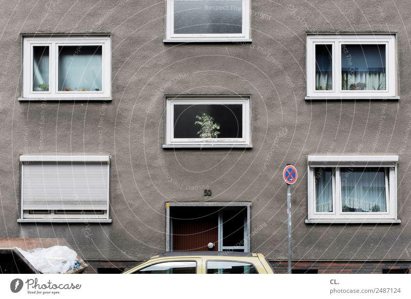 absolutes haltverbot (ende) Pflanze Stadt Haus Fenster Straße Wand Wege & Pfade Mauer grau Fassade Häusliches Leben PKW Verkehr Dekoration & Verzierung Tür