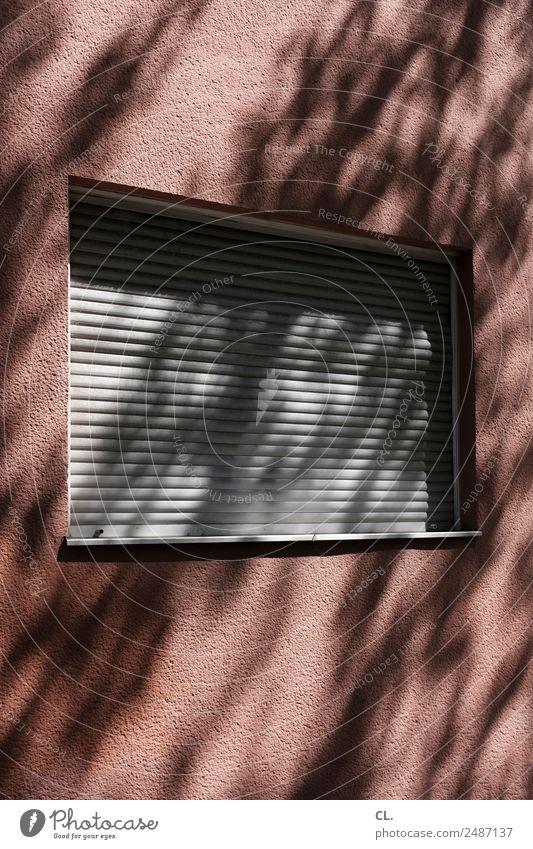 langschläfer Schönes Wetter Menschenleer Haus Mauer Wand Fenster Rollo Einsamkeit ruhig Häusliches Leben Privatsphäre geschlossen Schattenspiel Farbfoto