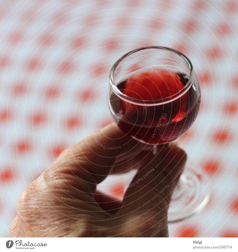 Pröstchen... Getränk trinken Alkohol Spirituosen Likör Likörglas Glas Mensch Hand Finger Feste & Feiern festhalten genießen authentisch einfach Flüssigkeit
