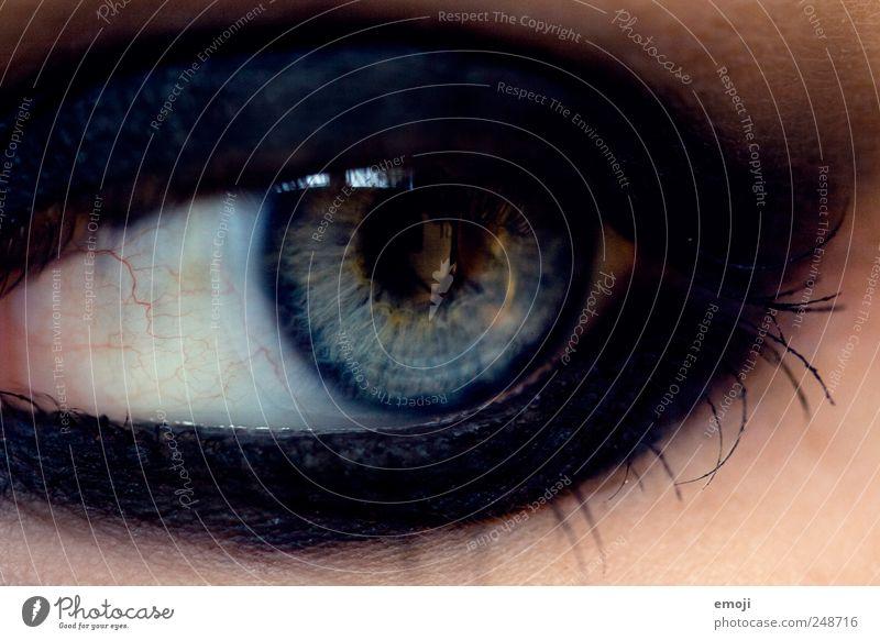 schwarz wie die Nacht Schminke Auge blau Kajal Lidschatten dunkel Regenbogenhaut Pupille Farbfoto Nahaufnahme Makroaufnahme
