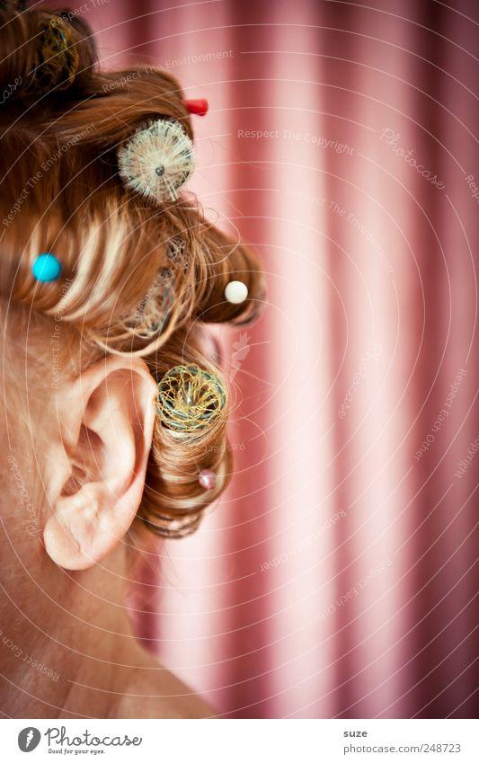Ohrenschmaus Frau Mensch schön feminin Kopf Haare & Frisuren Erwachsene lustig rosa Behaarung retro Streifen Stoff Show Maske