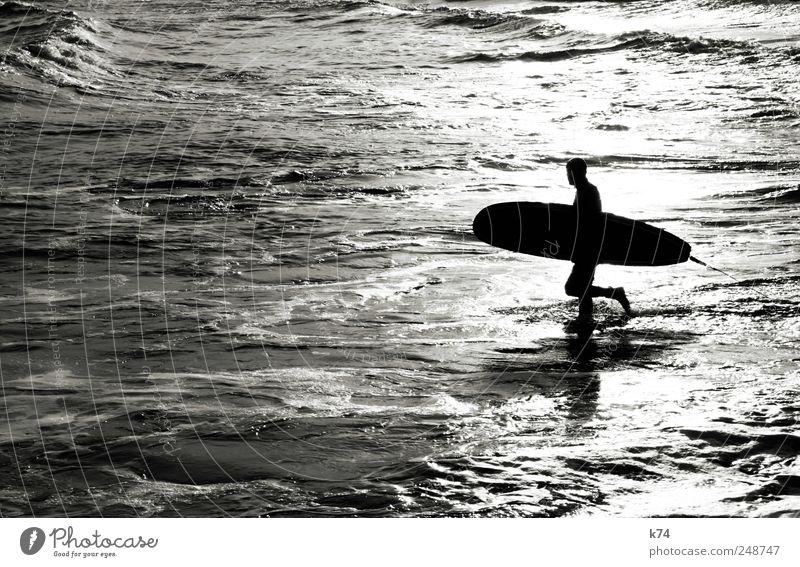 surfer Mensch Jugendliche weiß Meer schwarz Sport Küste Wellen laufen maskulin sportlich Schönes Wetter Surfen Surfbrett Junger Mann