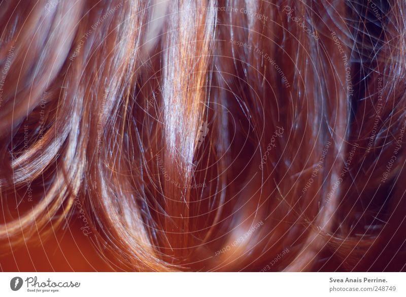 trashair. Haare & Frisuren brünett rothaarig langhaarig trashig Haarsträhne Haarschopf Farbfoto Detailaufnahme Kunstlicht Blitzlichtaufnahme Kontrast