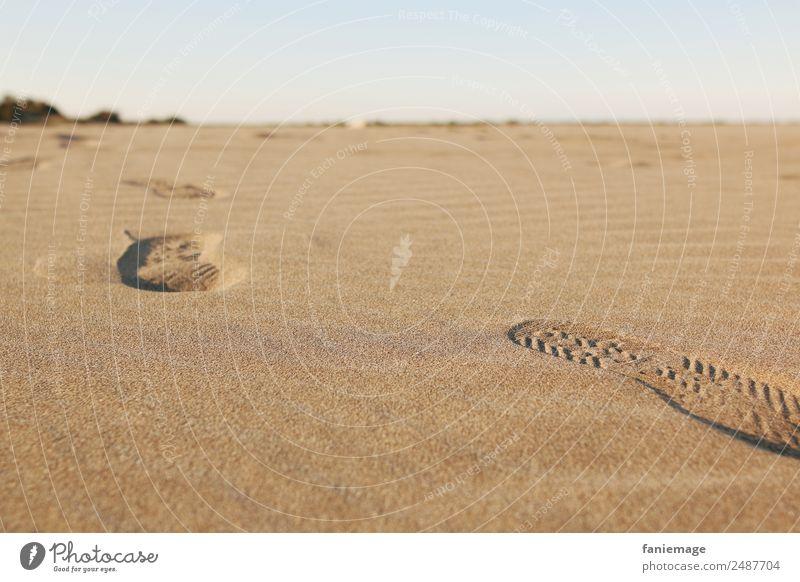 traces Umwelt Natur Sand Schönes Wetter Küste Strand gehen Spuren Fußspur laufen verfolgen vererben Schuhsohle Wüste Sandkorn Wege & Pfade Fußweg Horizont