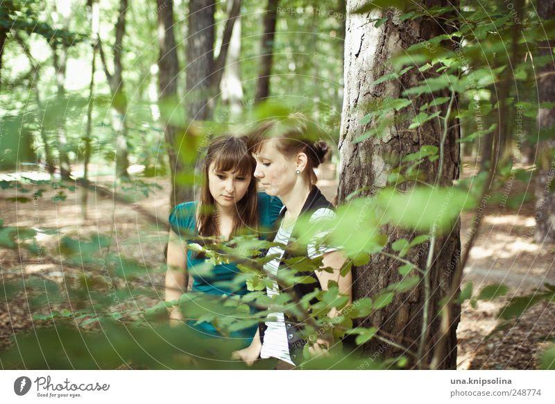 druschba Frau Mensch Natur Jugendliche grün Baum Blatt ruhig Wald Erholung Gefühle Landschaft Umwelt träumen Denken
